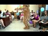 DancingBear Alaina's Fiesta...
